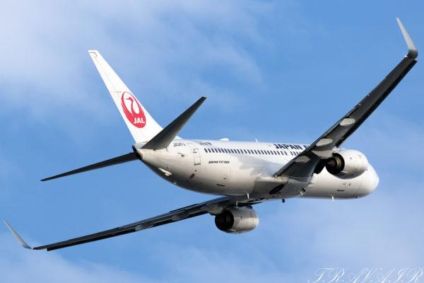 JL/JAL/日本航空 JL695 B737-800 JA347J