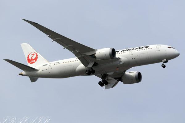 JL/JAL/日本航空 JL73 B787-8 JA839J