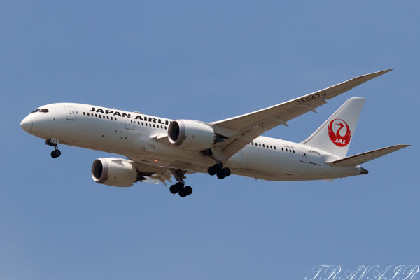 JL/JAL/日本航空 JL114 B787-8 JA847J