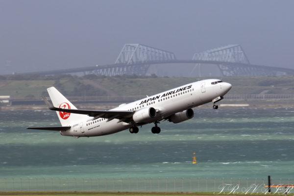JL/JAL/日本航空 JL633 B737-800 JA339J