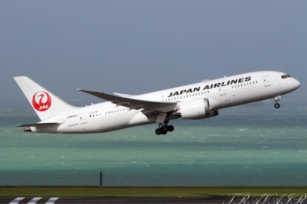 JL/JAL/日本航空 JL125 B787-8 JA846J