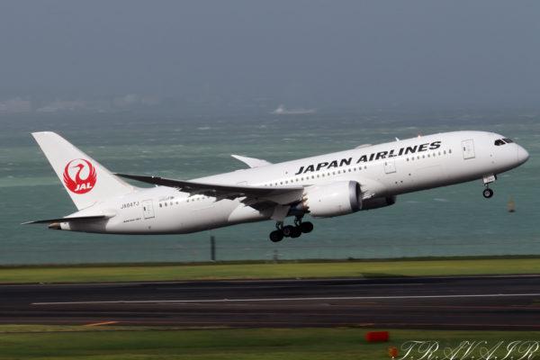 JL/JAL/日本航空 JL323 B787-8 JA847J