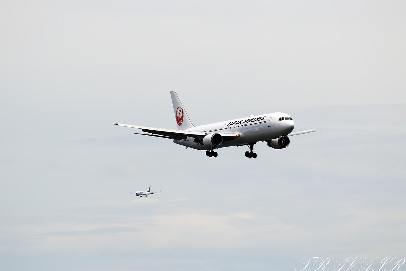 JL/JAL/日本航空 JL456 B767-300ER JA655J