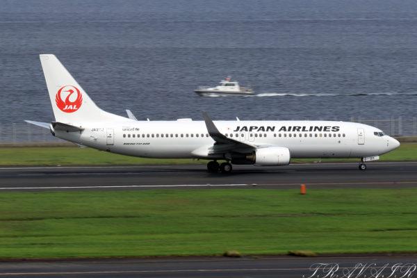 JL/JAL/日本航空 JL283 B737-800 JA311J