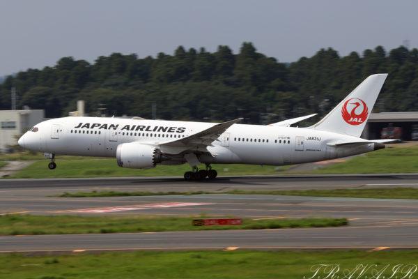 JL/JAL/日本航空 JL741 B787-8 JA834J