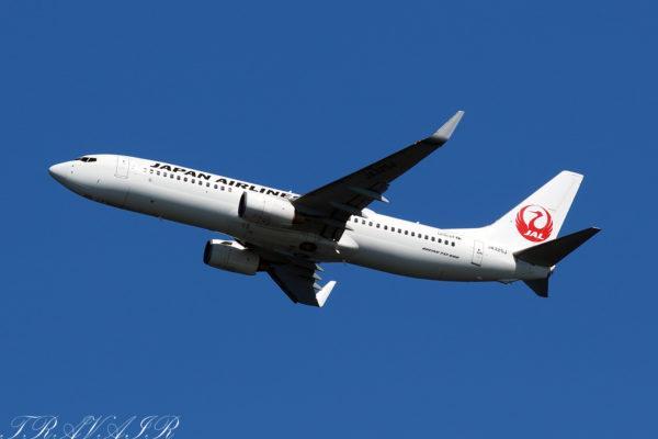 JL/JAL/日本航空 JL587 B737-800 JA325J