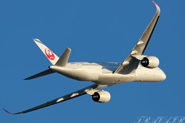 JL/JAL/日本航空 JL921 A350-900 JA04XJ