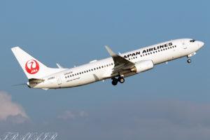 JL/JAL/日本航空 JL165 B737-800 JA338J