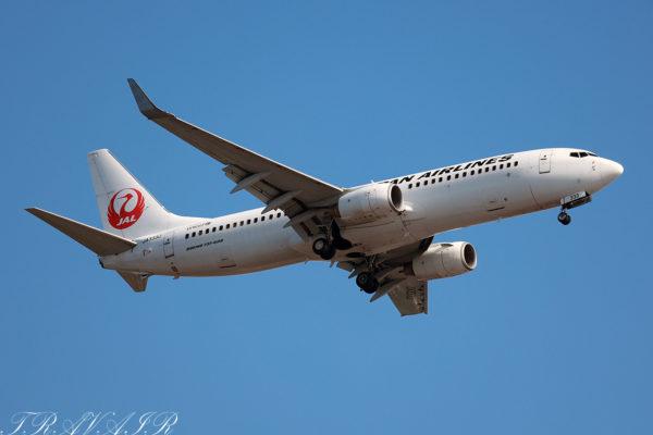 JL/JAL/日本航空 JL628 B737-800 JA333J