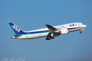 NH/ANA/全日空 NH71 B787-8 JA804A